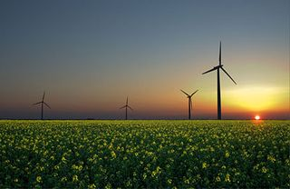 Sunsetandwindmills